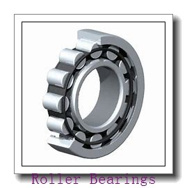 NSK 110TRL02 Roller Bearings