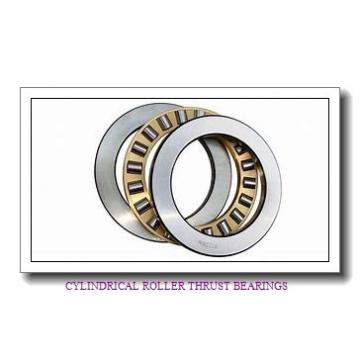 NSK 160TMP93 CYLINDRICAL ROLLER THRUST BEARINGS