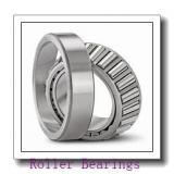 NSK 150RUBE40PV Roller Bearings